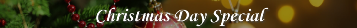 HS Christmas Day Banner